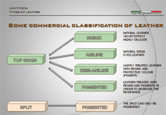Some commercial classification of leather